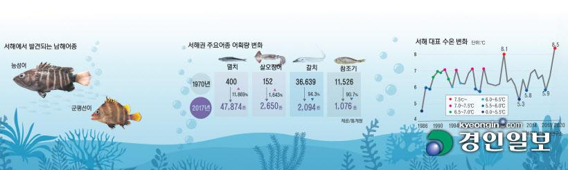 [기후위기 빙산의 일각]인천 앞바다 `현재 어장`