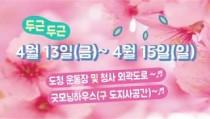 [리얼영상]``벚꽃엔딩은 경기도청에서…`` 주말 마지막 벚꽃 비라도 맞아보자