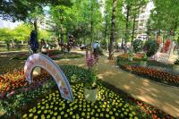 과천시, 화훼축제와 평생학습축제 통합해 9월 개최